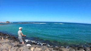 Read more about the article Montatura per la Pesca al Cefalo