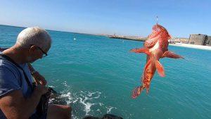 La Pesca a Light Rock Fishing con il Pane