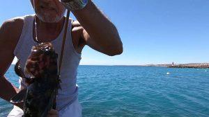 Pesca alle Cernie con il Light Rock Fishing