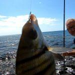 Pescare dalla Riva Rocciosa di Puerto del Rosario